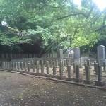 西南戦争・佐賀の乱墓地