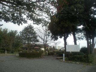 屯田の森画像
